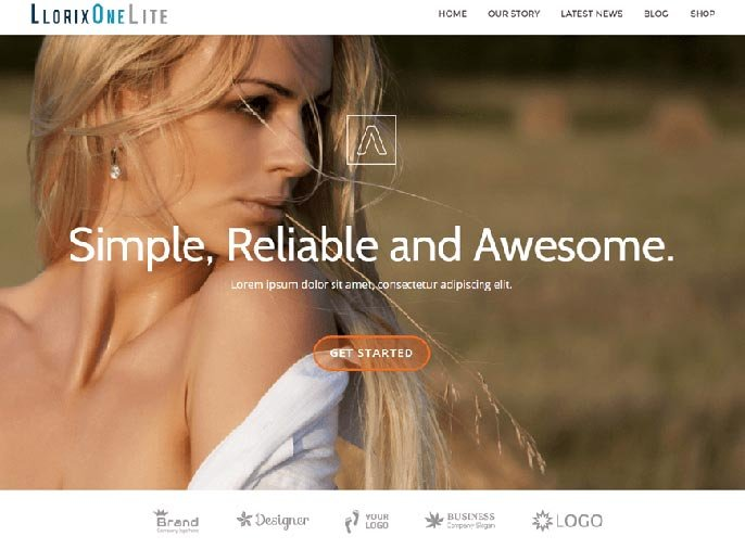 Llorix One Lite WordPress tema-skermkiekie